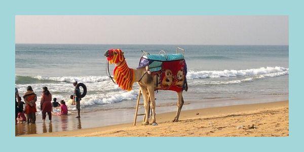 Puri-Beach-near-jagannath-temple