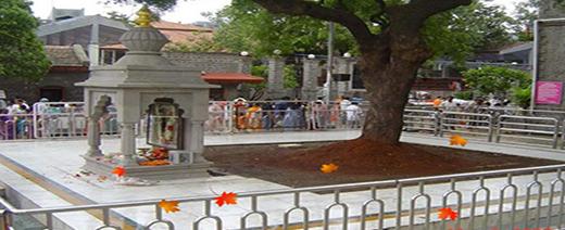 About SaiBaba Temple Shirdi