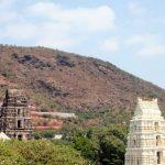 Mangalagiri Panakala Lakshmi Narasimha Swamy Temple Timings, Darshan Timings, Ticket Cost